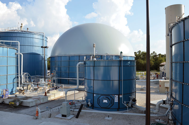 Florida Power Plants Map