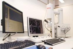Sensor-Bioreaktor