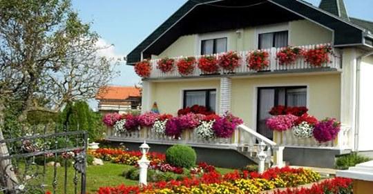 Ovo balkonsko cvijeće