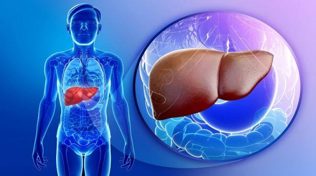 Vaša jetra