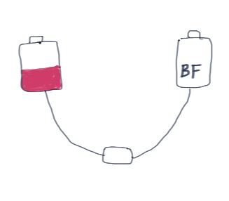 bf