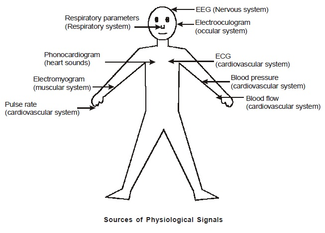 Important Physiological Signals In The Body Latest
