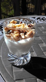 SCD Yogurt and SCD CRUNCHY, NUTTY, CINNAMONY, GRANOLA