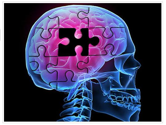 Alzheimer's Diet, Microbiome, & Bio-marker Predictors