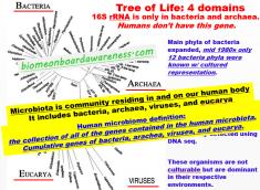 Microbiota and Microbiome Definition