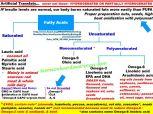 Fatty Acids Chart