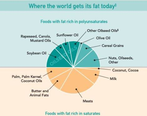 Where the world gets its fat today
