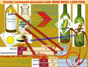 Carotenoid absorption increases with more mufa and less pufa