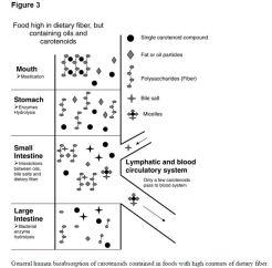 Figure 3, Carotenoid digestion for high fiber diet