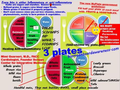 3 Plates: cardiologist, USDA, healing diets