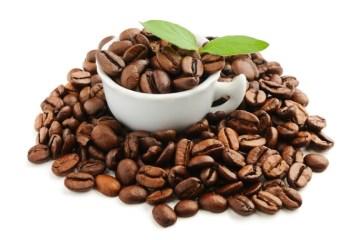 βιολογικος καφες