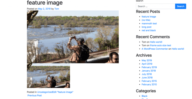 A screenshot from codepen showing one example of how featured image duplication can look awkward.
