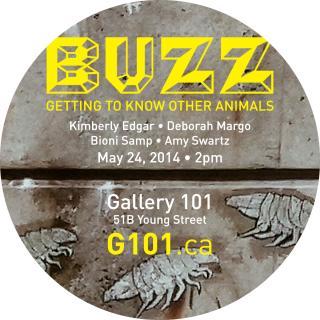 Buzz Getting To Know Other Animals, Ottawa, Canada 2014