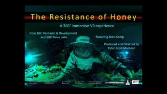 a01-honey