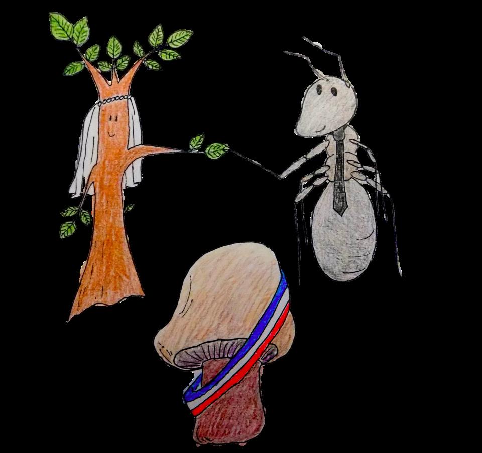 — Madame Plantae consentez-vous à prendre pour époux, Monsieur Formicidae ?