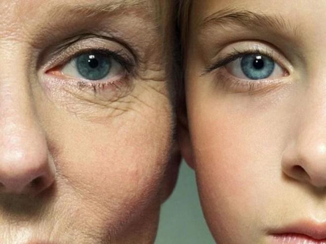 colágeno y envejecimiento