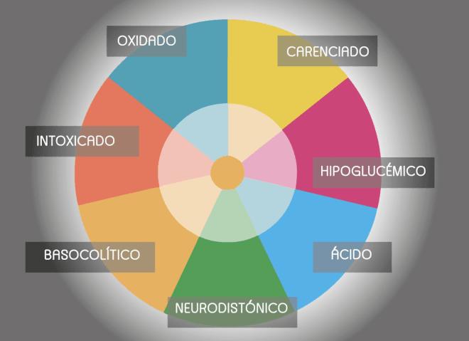 Test IOMET by Bionutrición Ortomolecular