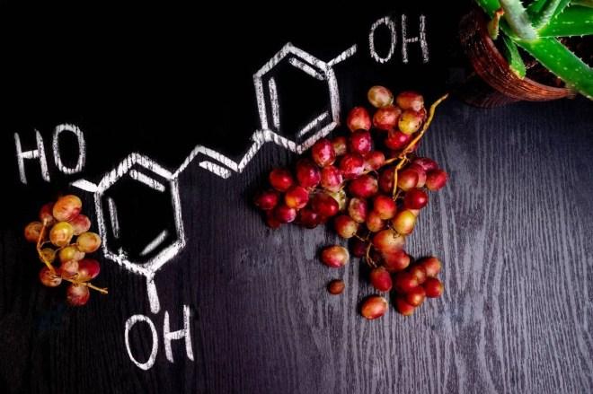 Nutrición Antioxidante II- Bionutrición Ortomolecular
