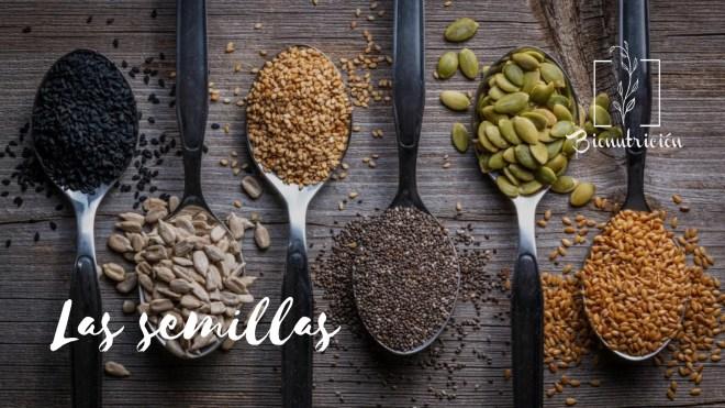 Las semillas- Bionutricion Ortomolecular