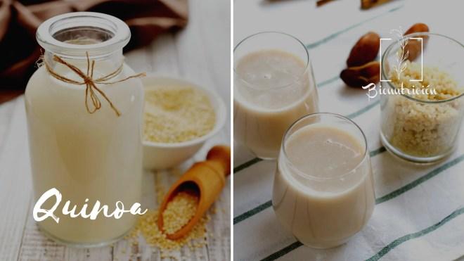 Leches vegetales: propiedades de la leche de quinoa - Bionutrición Ortomolecular