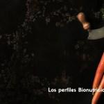 Terreno B – basocolítico