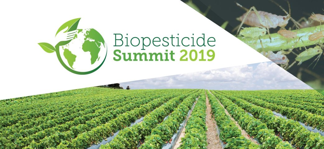 Multiple rows of Strawberries growing in a field and the Biopesticide Summit 2019 logo