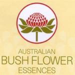 Fleurs du Bush Australien