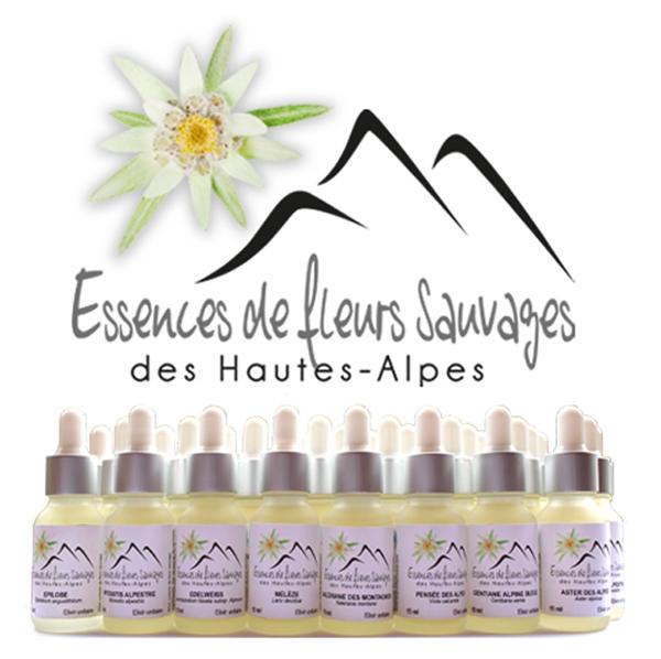 essences fleurs sauvages hautes alpes