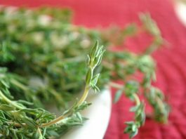 What're the Five Benefits of Fresh Thyme?