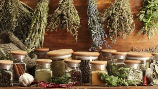 what is phytotherapy