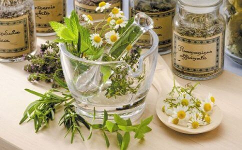 Phytotherapy: How to use Plants or Parts of Plants?
