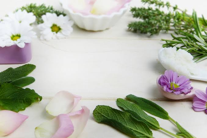 Phytotherapy Complementary medicine