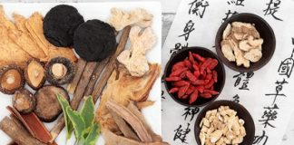 Principal Chinese Herb Types