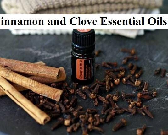 Cinnamon and Clove Essential Oils