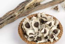 Best 15 Benefits of Moringa Seeds