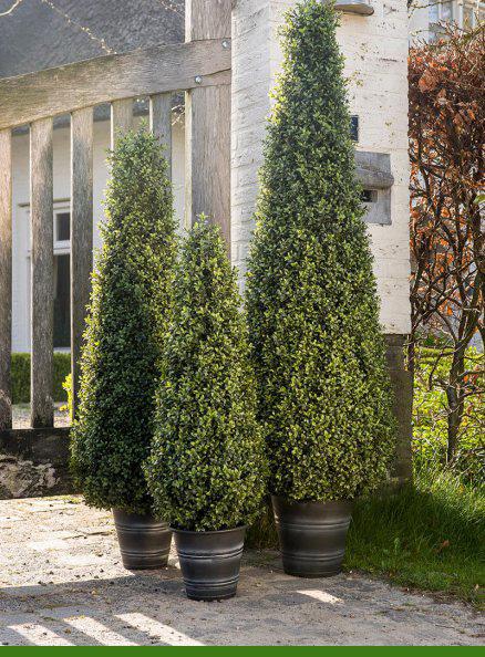 plantas grandes artificiales