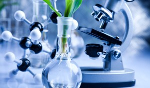 Bioplastics News R&D