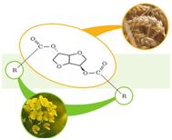 PolySorb biohub bioplastics