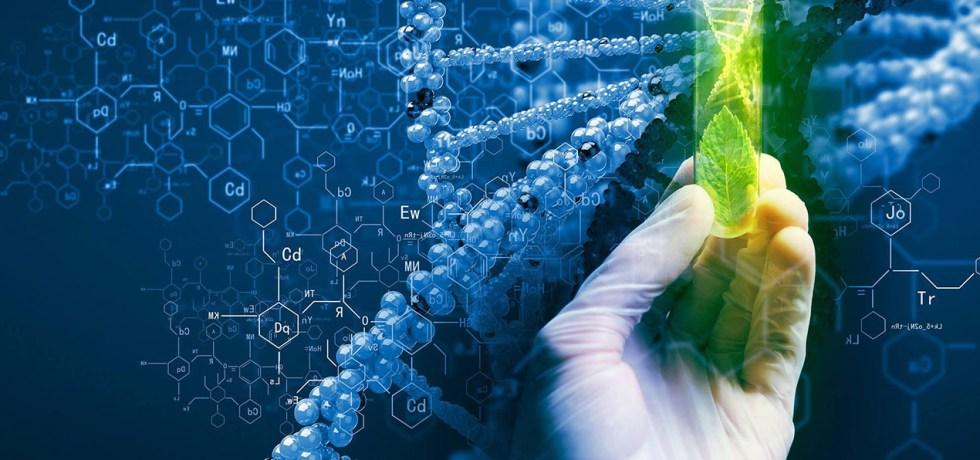 bioplastics polysaccharides