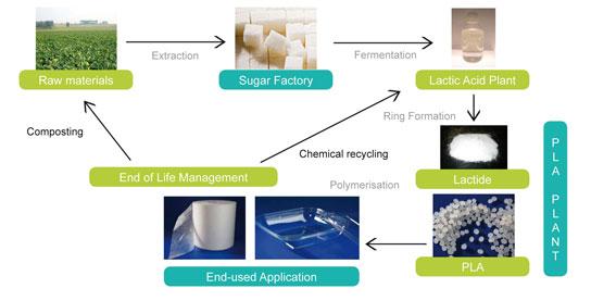 Polylactic acid or polylactide (PLA)
