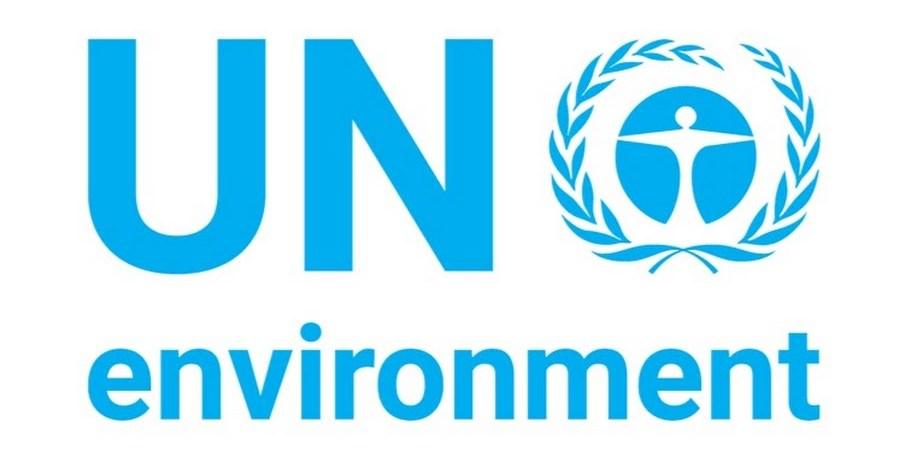 un report plastic alternatives and pollution