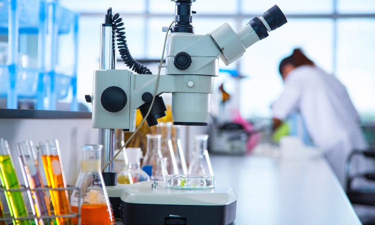 chromatography bioplastics