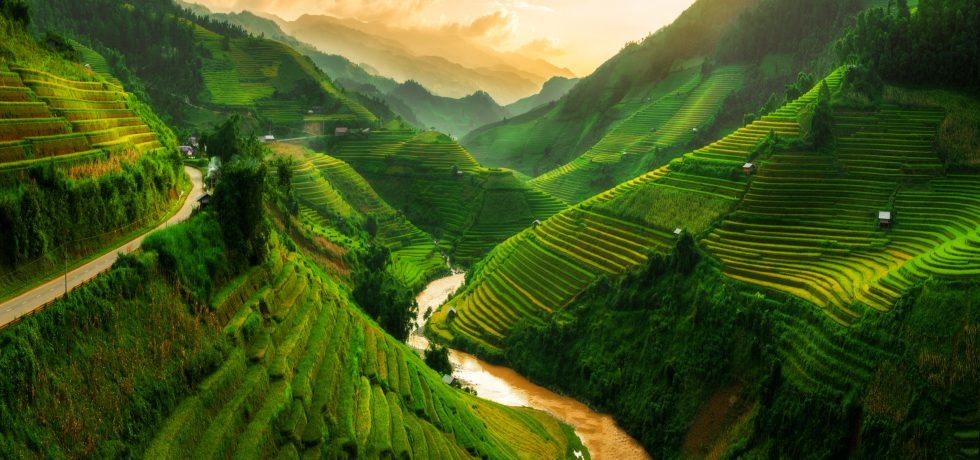 vietnam bioplastics