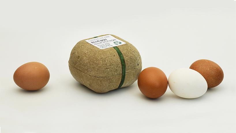 bioplastics packaging seeds plant