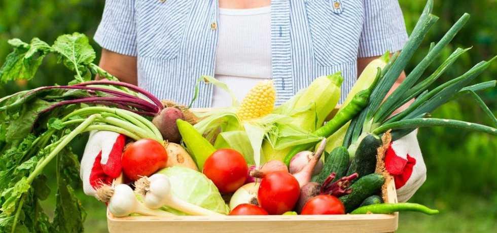 PFAS biobased food contact material