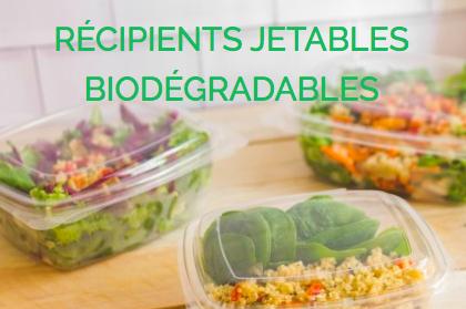 Bioplastics - cover