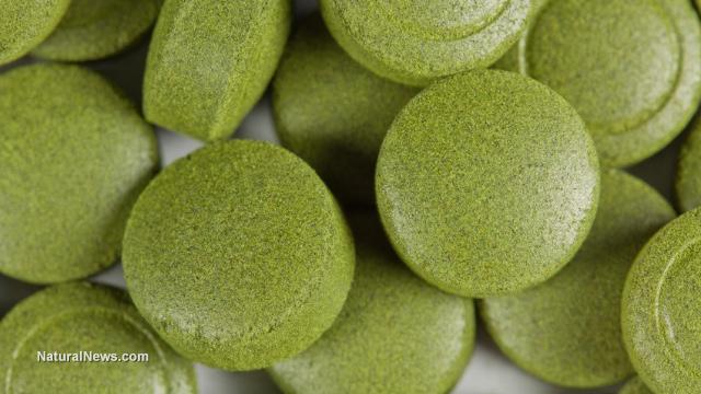Ново проучване открива, че спирулина може да помогне за лечение на рак на панкреаса