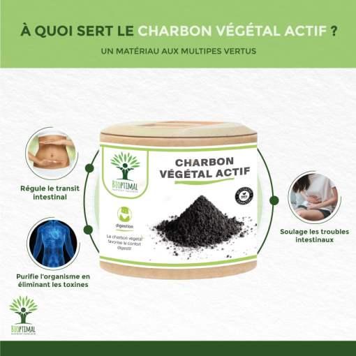 Bienfaits Charbon végétal actif