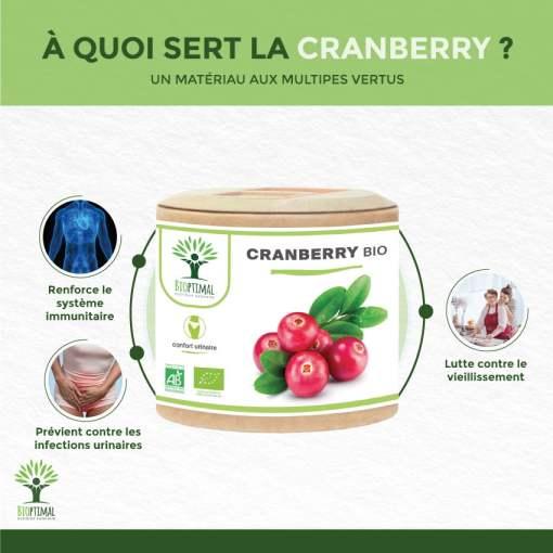 Bienfaits Cranberry Bio