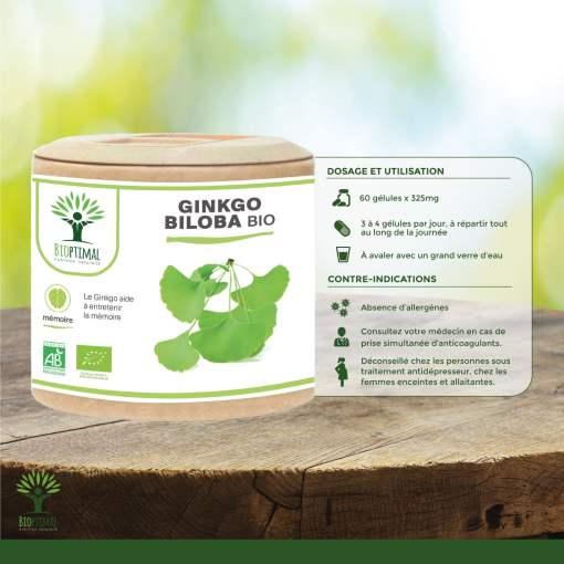 Utilisation Ginkgo Biloba bio